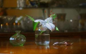 Фотошкола Ксении Тихоновой на страницах журнала TVGorod